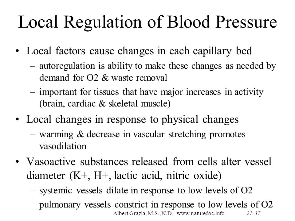 Albert Grazia M S N D 516 Anatomy Amp Physiology 2