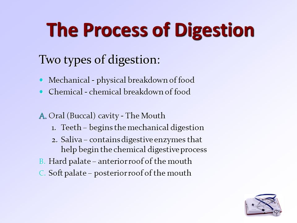the two processes of digestion Digestion is a form of catabolism that is often divided into two processes based on how food is broken down: mechanical and chemical digestion the term mechanical digestion refers to the physical breakdown of large pieces of food into smaller pieces which can subsequently be accessed by digestive enzymes .