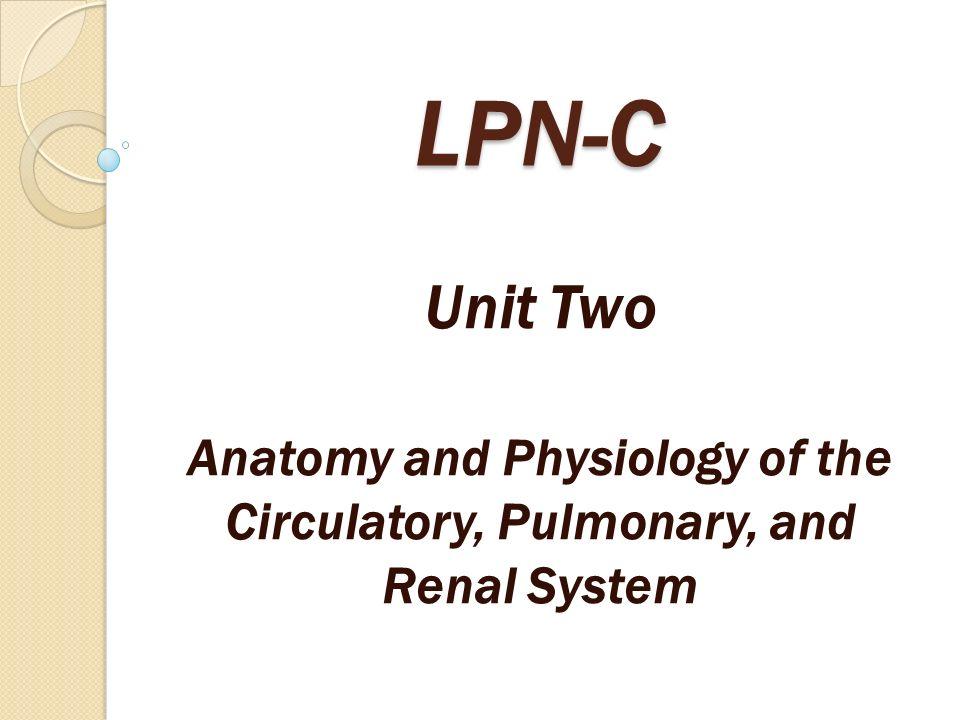 Großartig Lpn Anatomy And Physiology Galerie - Menschliche Anatomie ...