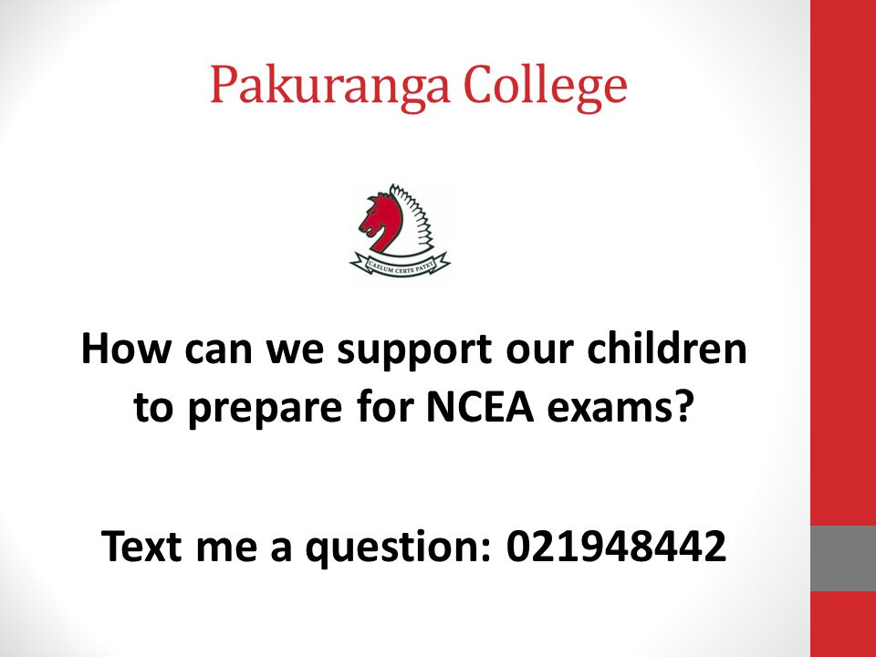ncea level one essay questions