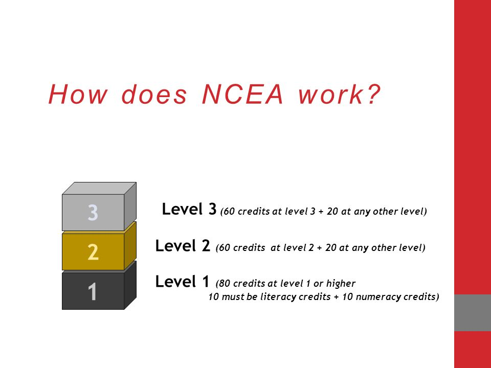 ncea film essay questions Posts about ncea written by this film shows the process of cracking there are 6 essay questions from the 8 provided on the list that i will be able to.