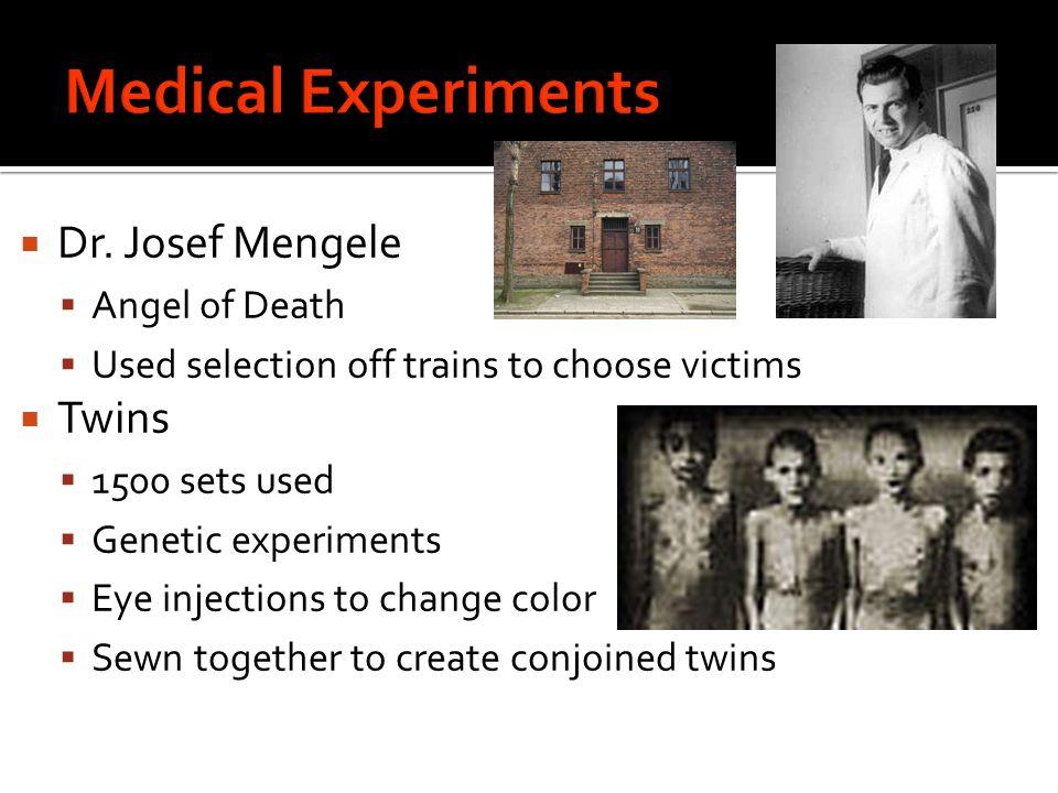 essay on dr josef mengele A short biography of josef mengele, the infamous doctor of auschwitz.
