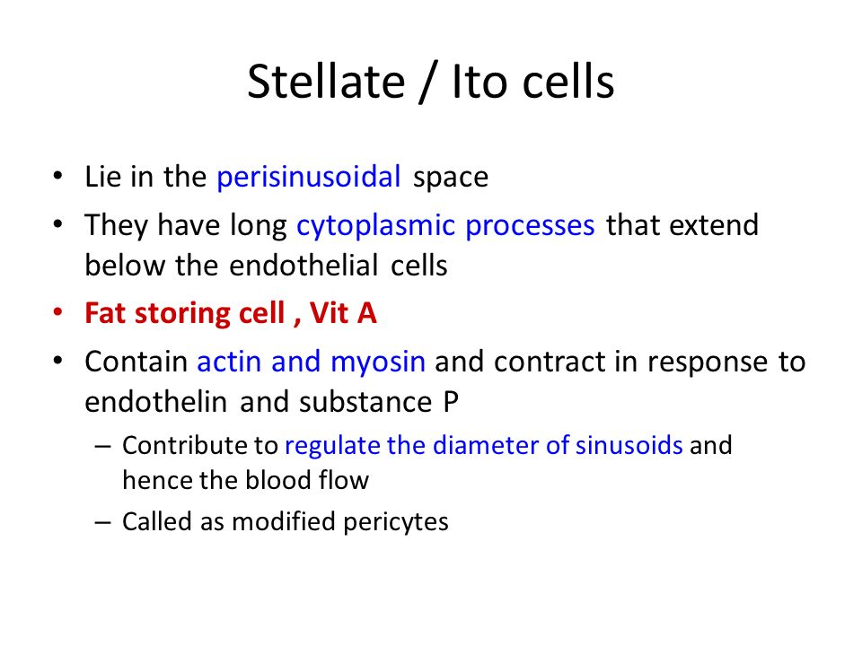 Excellent Small Spaces In Which Bone Cells Lie Pictures - Simple ...