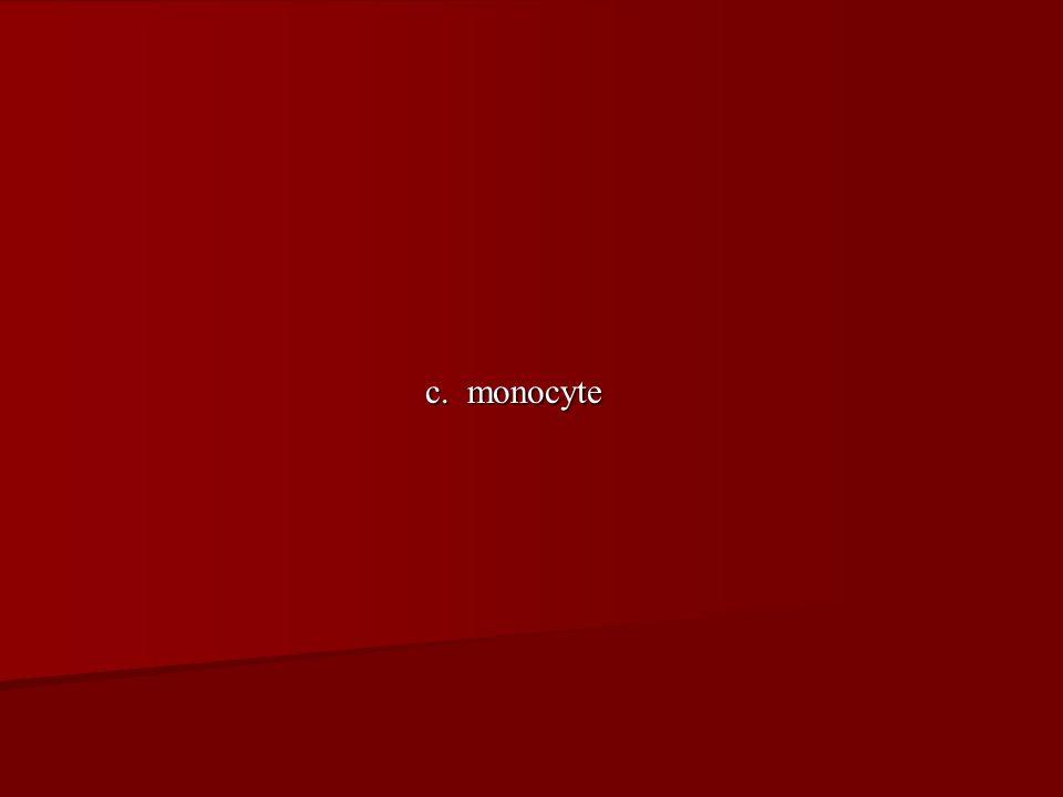 c. monocyte