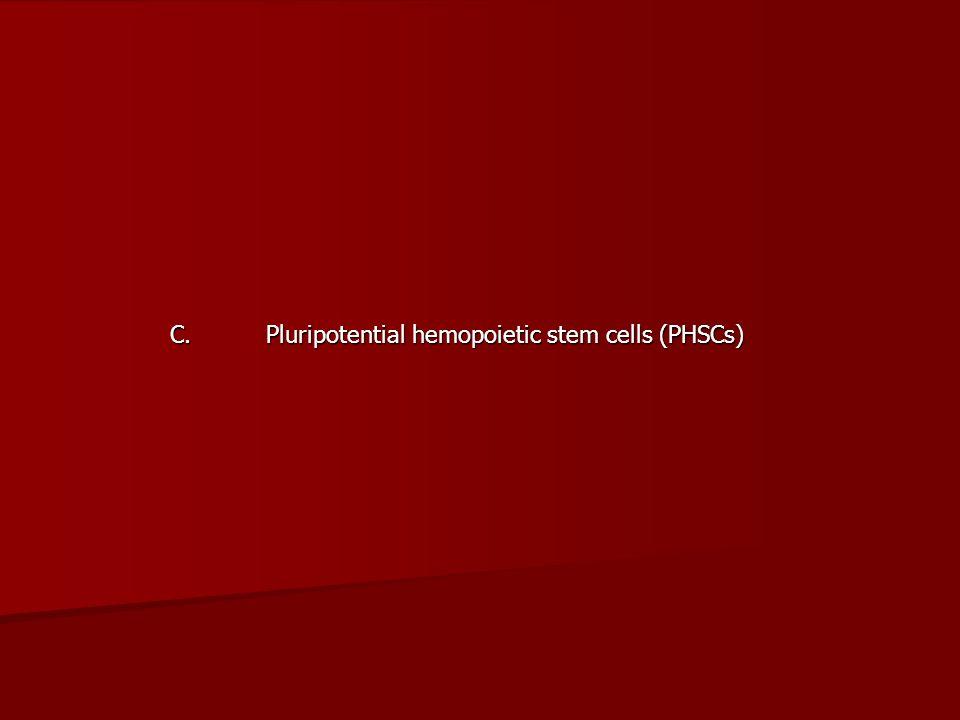 C. Pluripotential hemopoietic stem cells (PHSCs)