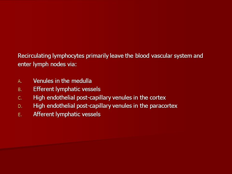 Recirculating lymphocytes primarily leave the blood vascular system and