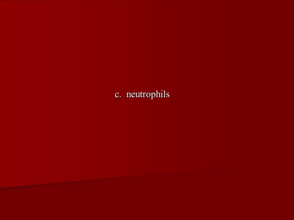 c. neutrophils