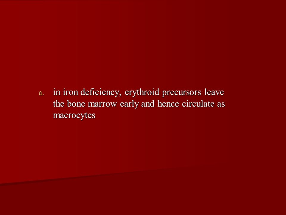 in iron deficiency, erythroid precursors leave the bone marrow early and hence circulate as macrocytes