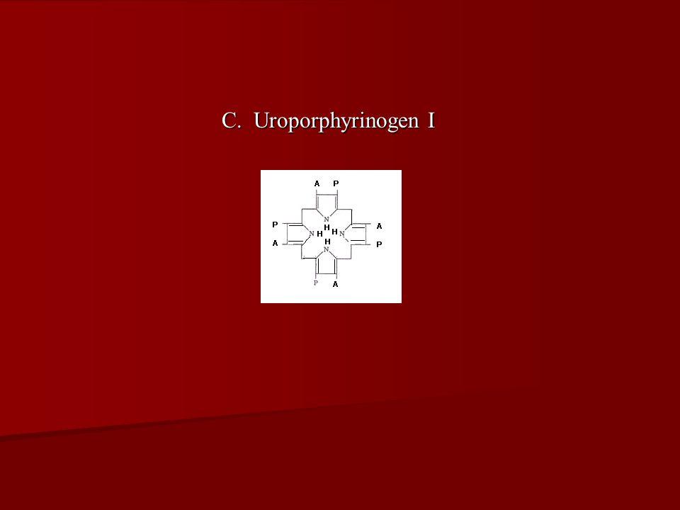 C. Uroporphyrinogen I