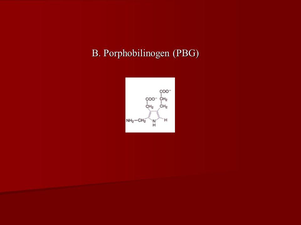 B. Porphobilinogen (PBG)