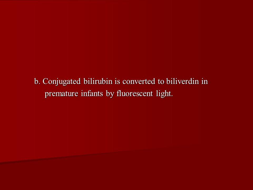 b. Conjugated bilirubin is converted to biliverdin in