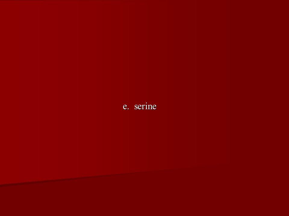 e. serine