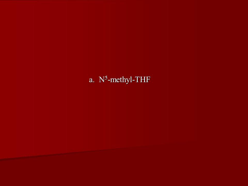 a. N5-methyl-THF