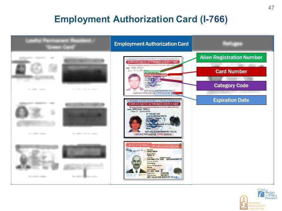 Employment Authorization Card I