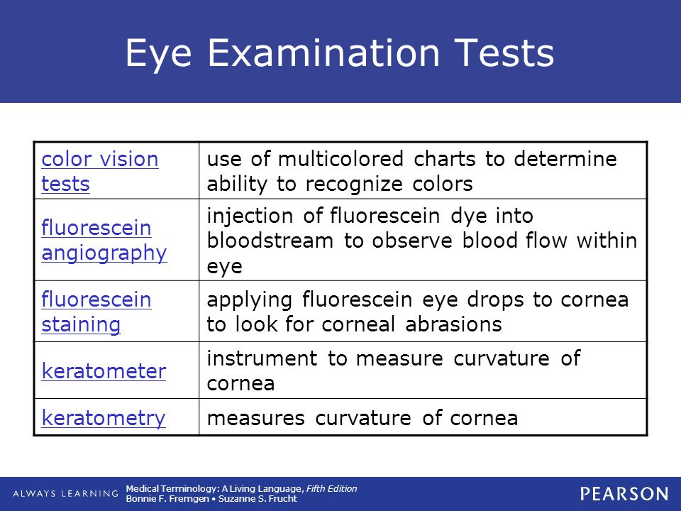 13 Special Senses: The Eye and the Ear. - ppt download