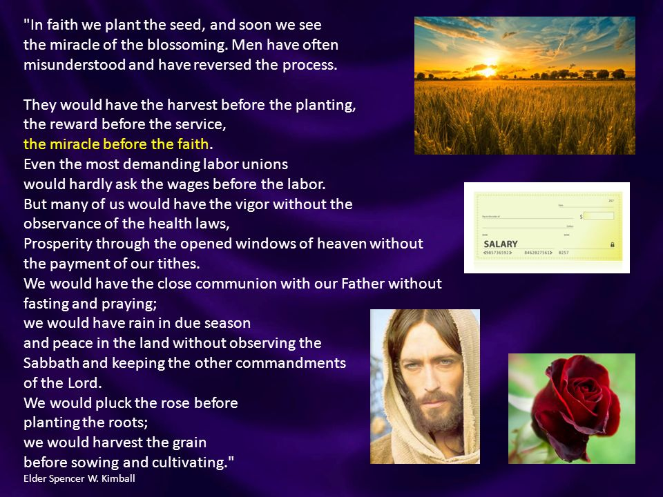 the miracle of seed faith pdf