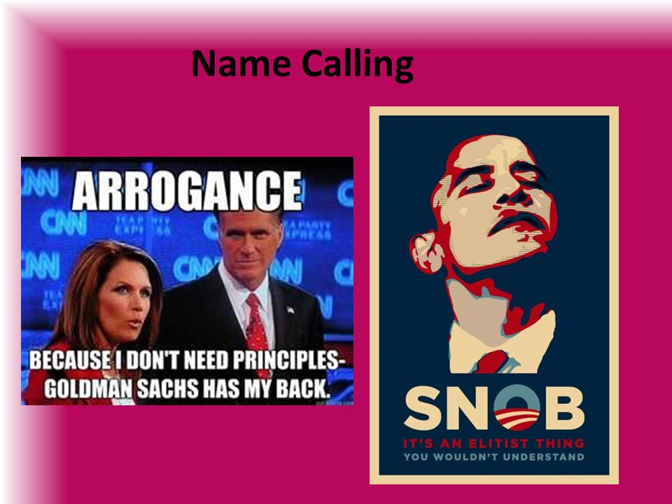 Name Calling: Voting, Campaigns, Campaign Finances, Media And Interest
