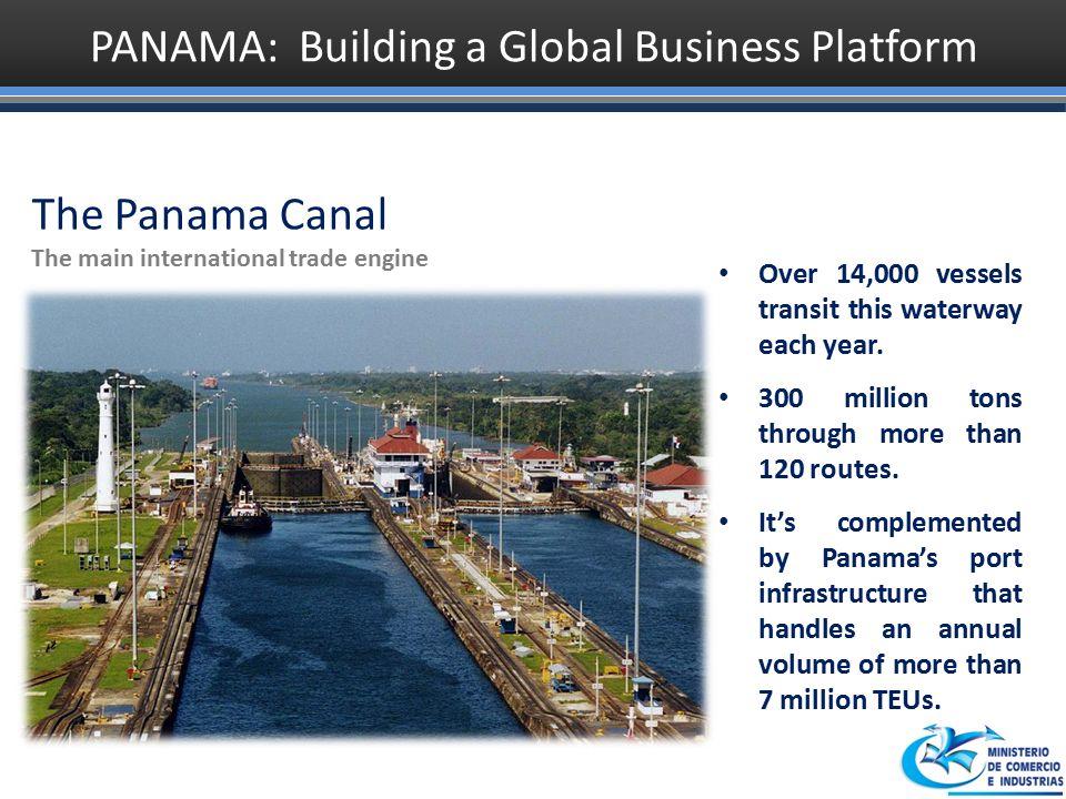 maria bas international trade