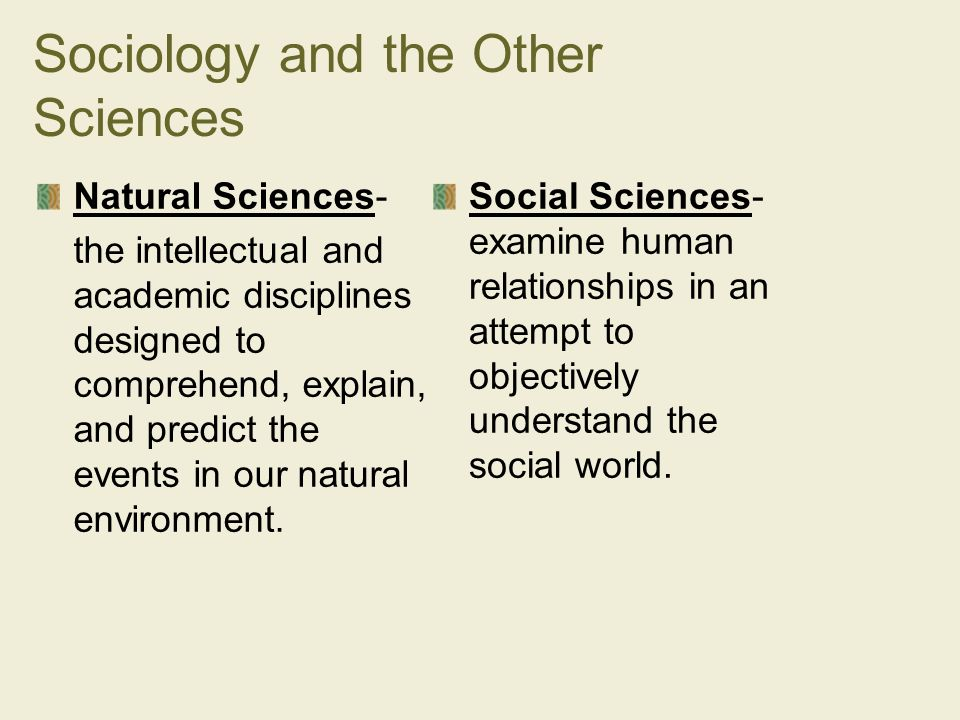 examine the relationship between sociology and other social sciences