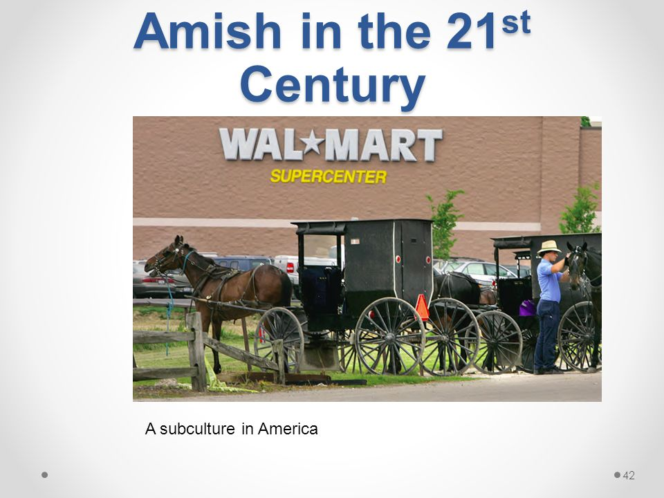 unit chapters ppt video online  42 amish in the 21st century a subculture in america