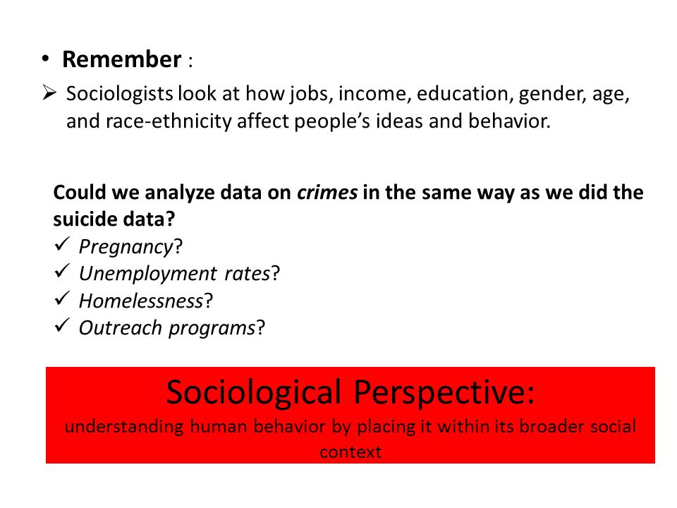 Why is sociology useful?