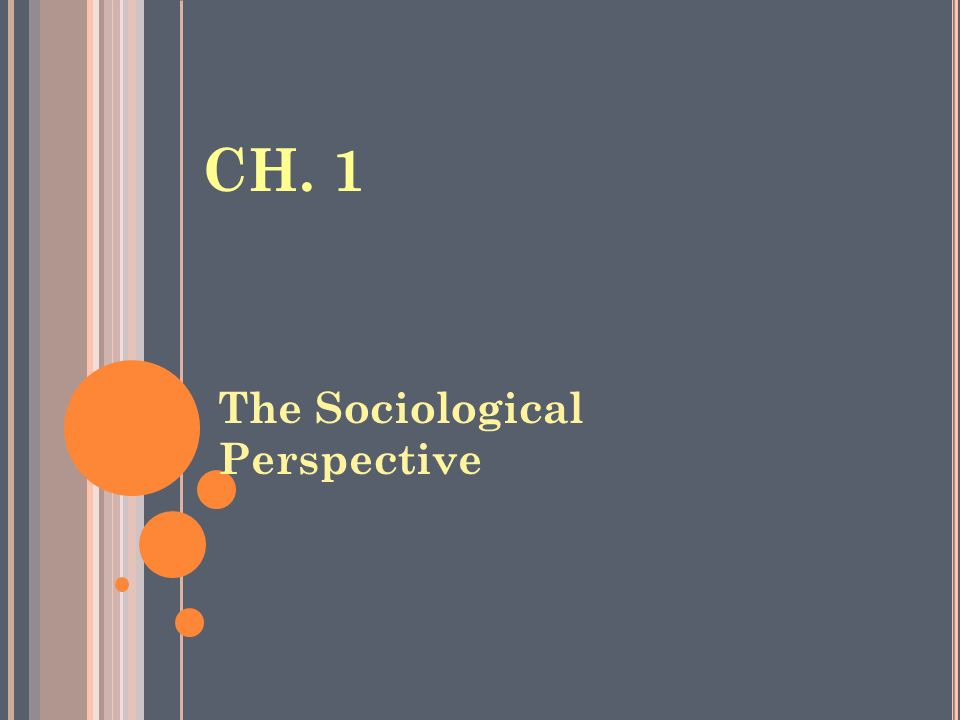 the sociological perspective on human interaction The sociological perspective from patterns of every day interaction to social social research, community work, social activism, health, human services.