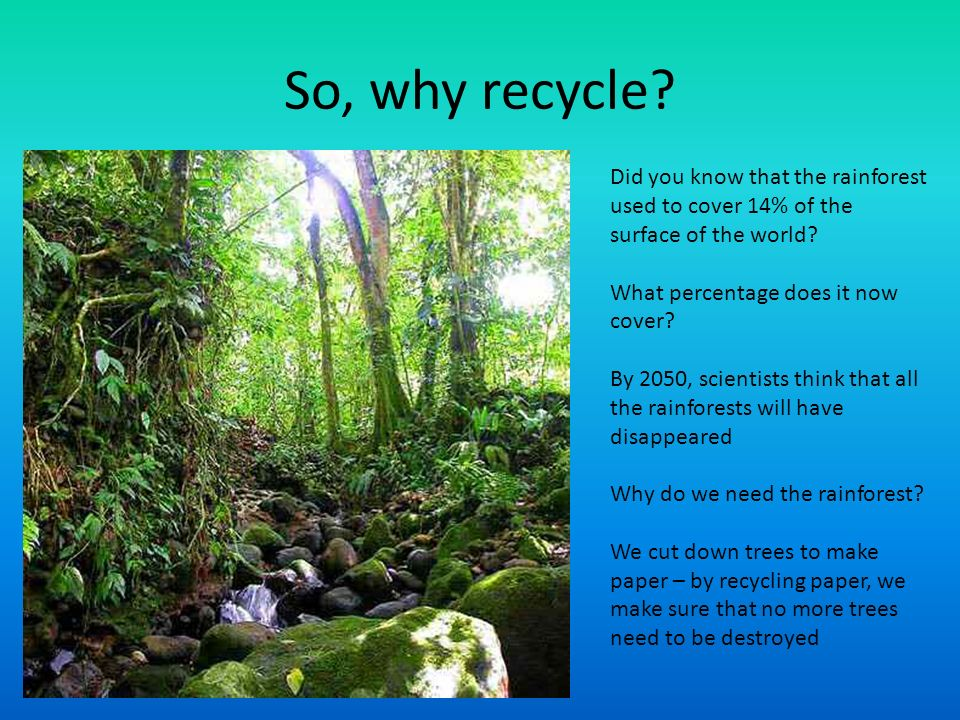 Recycling ppt download for What do we use trees for