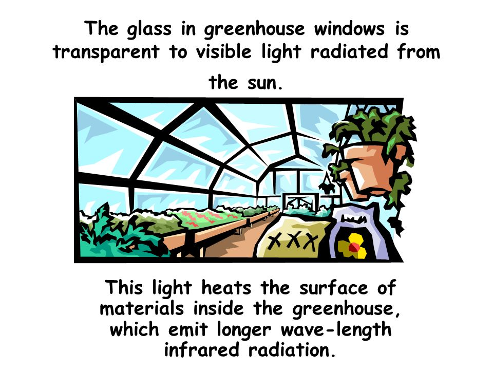 The glass in greenhouse windows is transparent to visible light radiated from the sun.