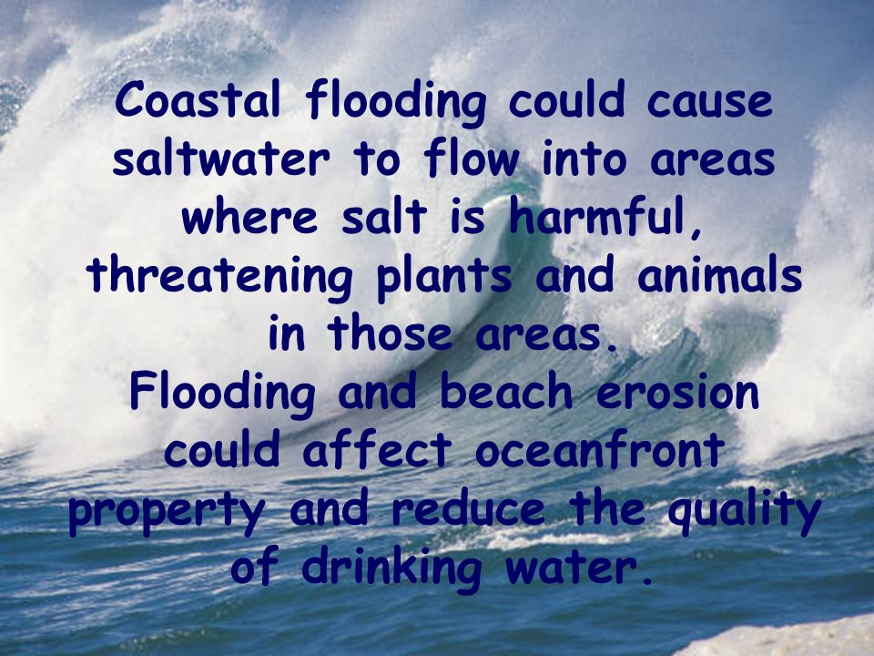 Coastal flooding could cause saltwater to flow into areas where salt is harmful, threatening plants and animals in those areas.