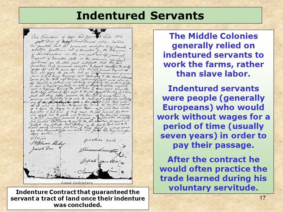 the indentured servants of north america Colonies of mainland north america and the west indies during the  england6  in this light, indentured servants may not have been as atypical as has.