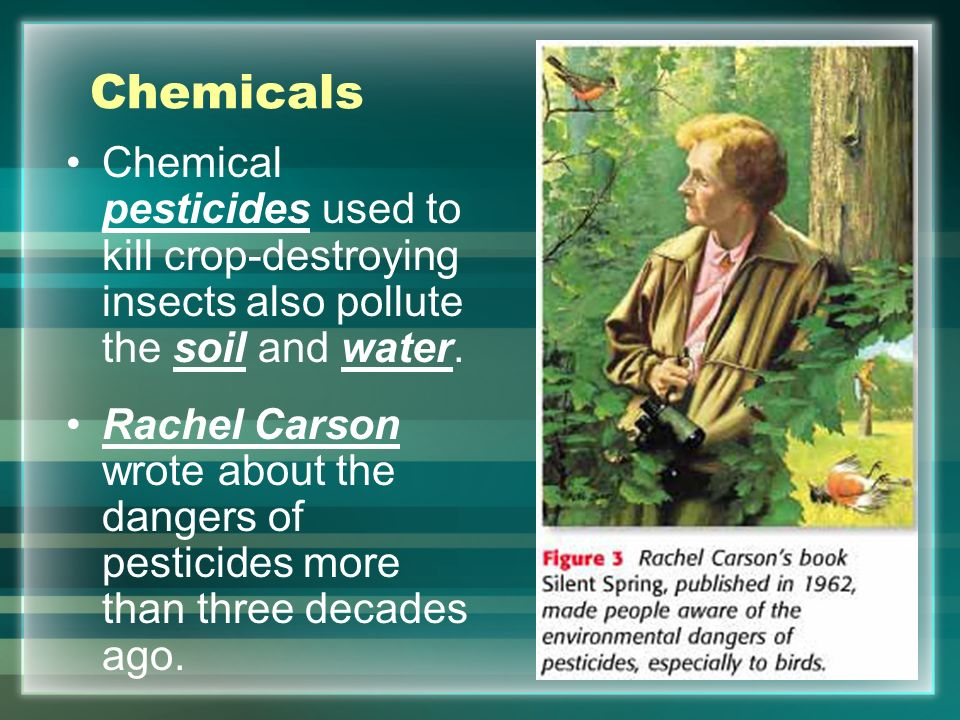 an analysis of insecticide used to kill insects Google has not performed a legal analysis and makes no  in the insecticide composition must be used in larger and  which are used to kill insects.