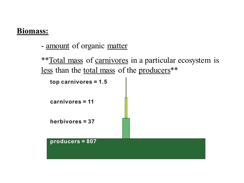 Biomass: - amount of organic matter.