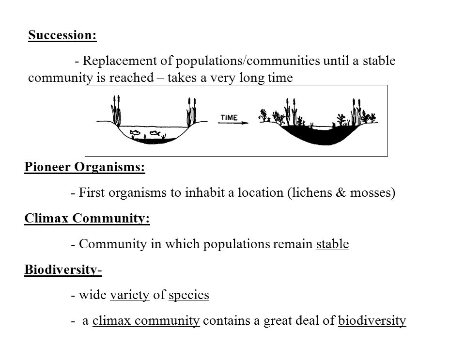 Succession: - Replacement of populations/communities until a stable community is reached – takes a very long time.