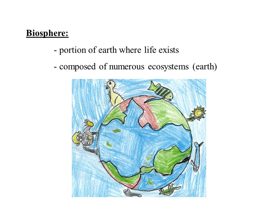 Biosphere: - portion of earth where life exists - composed of numerous ecosystems (earth)