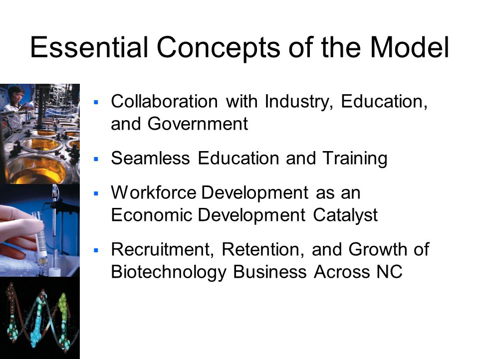Essential Concepts of the Model