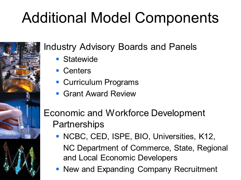 Additional Model Components