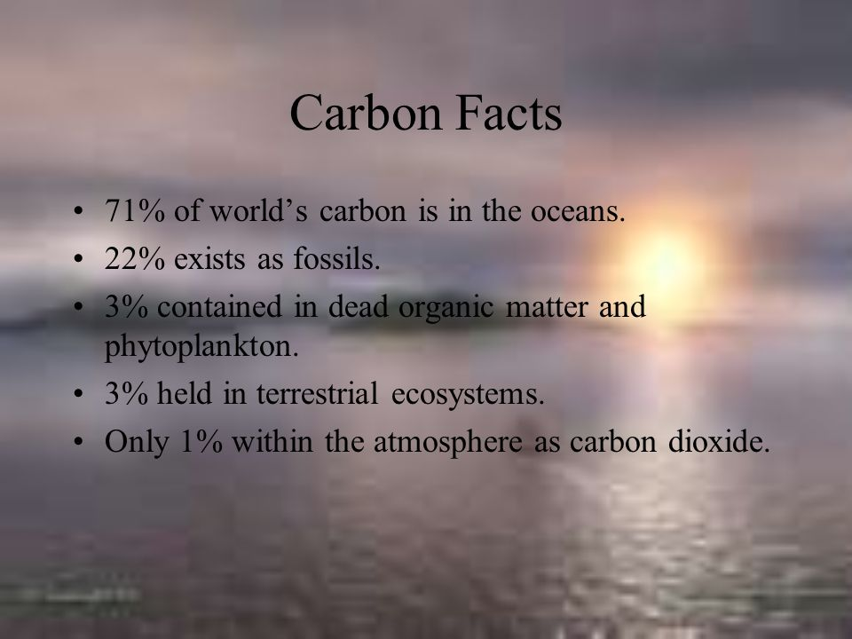 Carbon Facts 71% of world's carbon is in the oceans.