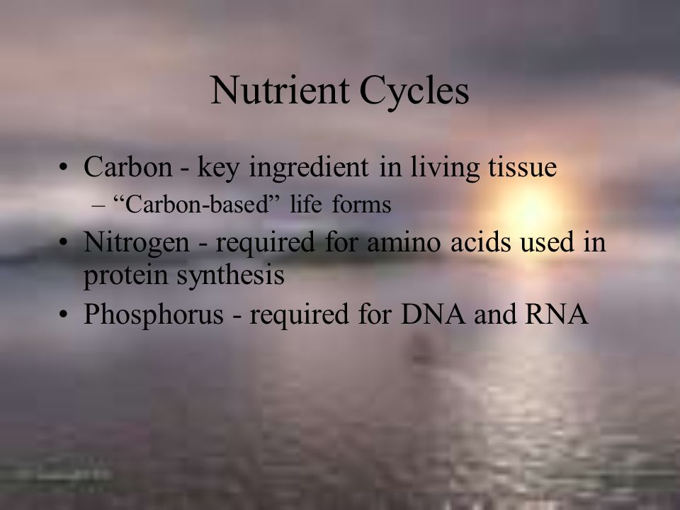 Nutrient Cycles Carbon - key ingredient in living tissue