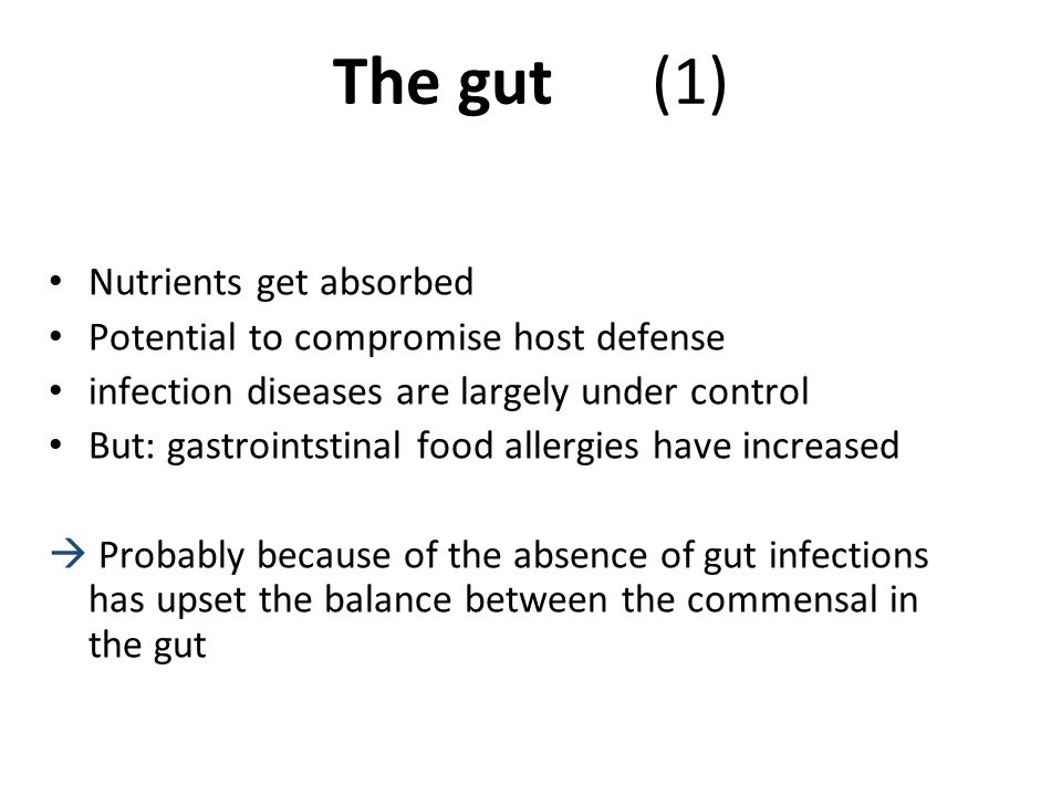 The gut (1) Nutrients get absorbed
