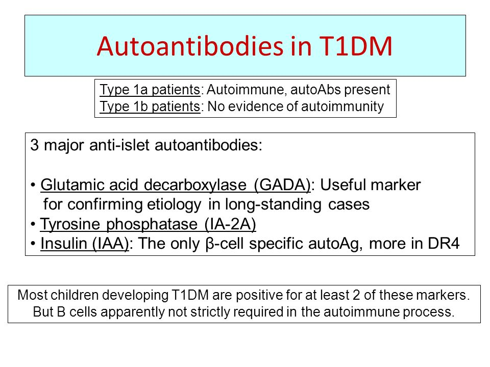 Autoantibodies in T1DM 3 major anti-islet autoantibodies: