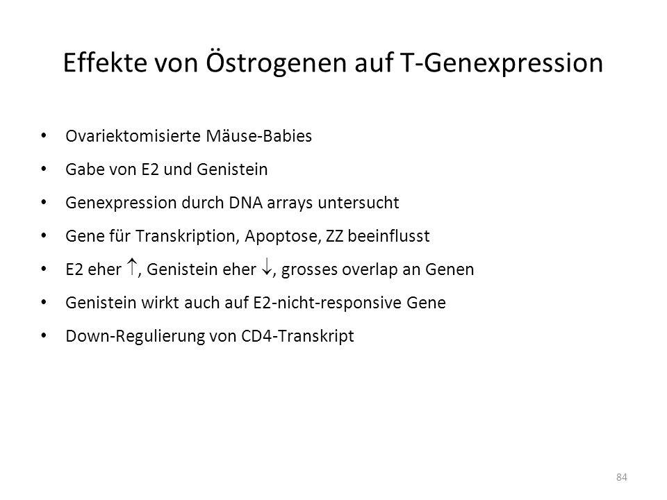 Effekte von Östrogenen auf T-Genexpression
