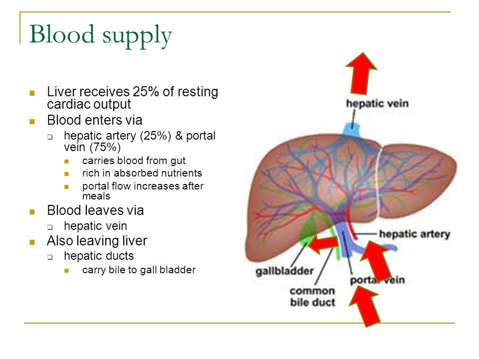 Drug Use In Chronic Liver Disease Ppt Video Online Download