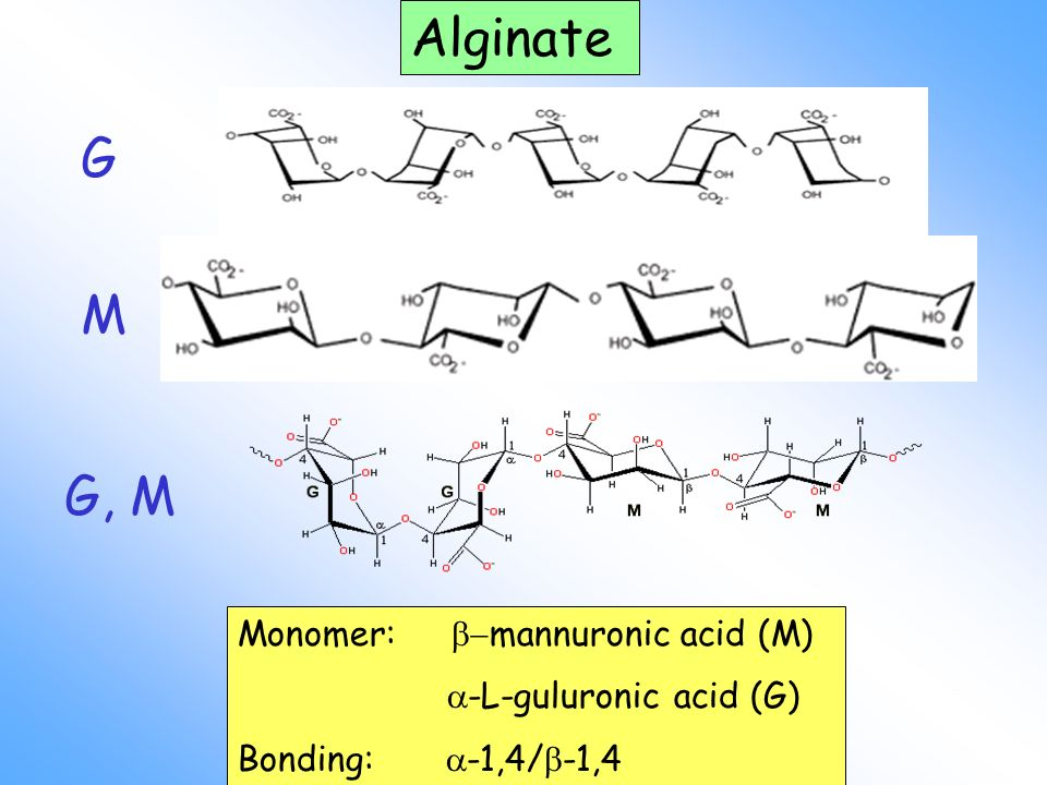 Alginate G M G, M Monomer: -mannuronic acid (M)