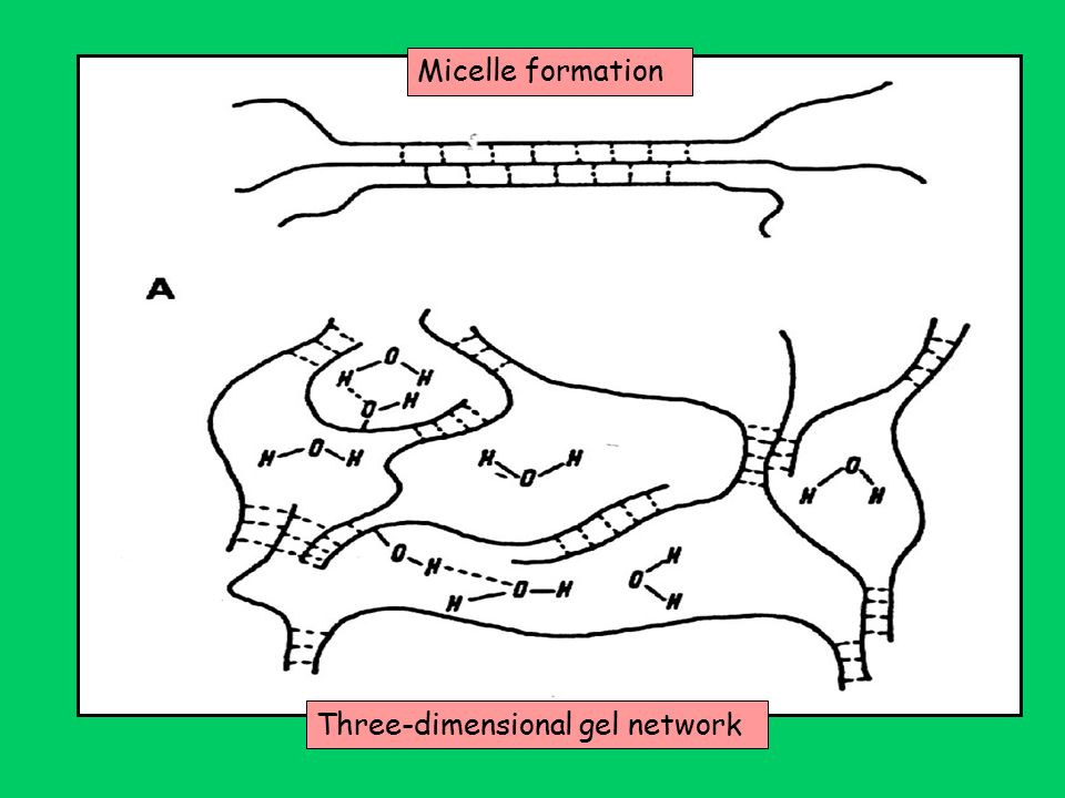 Micelle formation Three-dimensional gel network