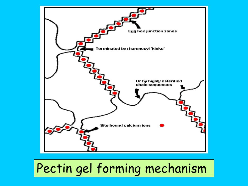 Pectin gel forming mechanism
