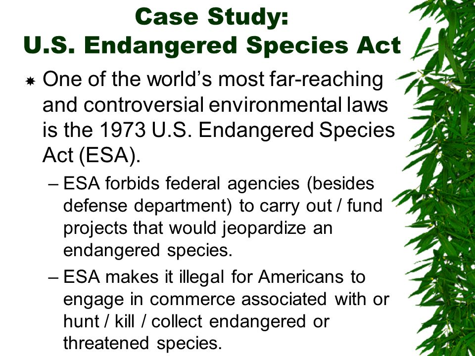 Case Study US Endangered Species Act