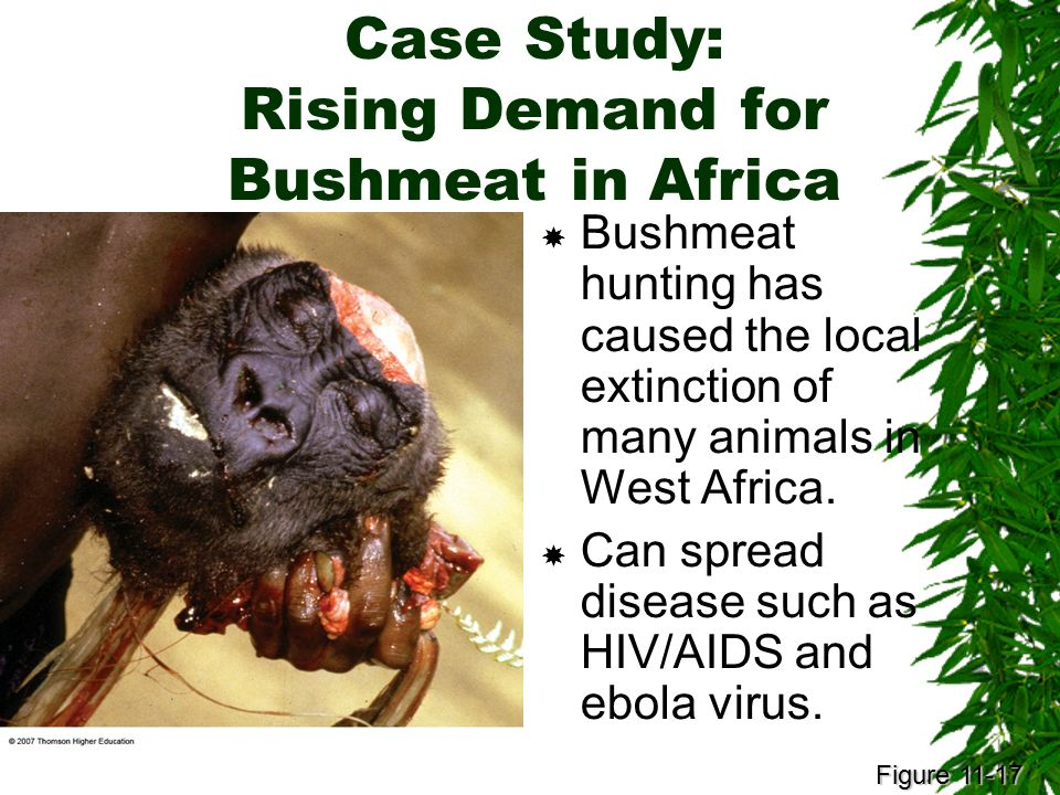 a research on the problems and prevention of ebola and aids virus Ebola, the killer virus haider ghazanfar 1,  centers for disease control and prevention ebola virus disease  • research which is freely available for.