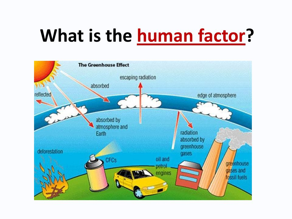 What is the human factor