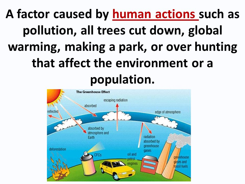 A factor caused by human actions such as pollution, all trees cut down, global warming, making a park, or over hunting that affect the environment or a population.