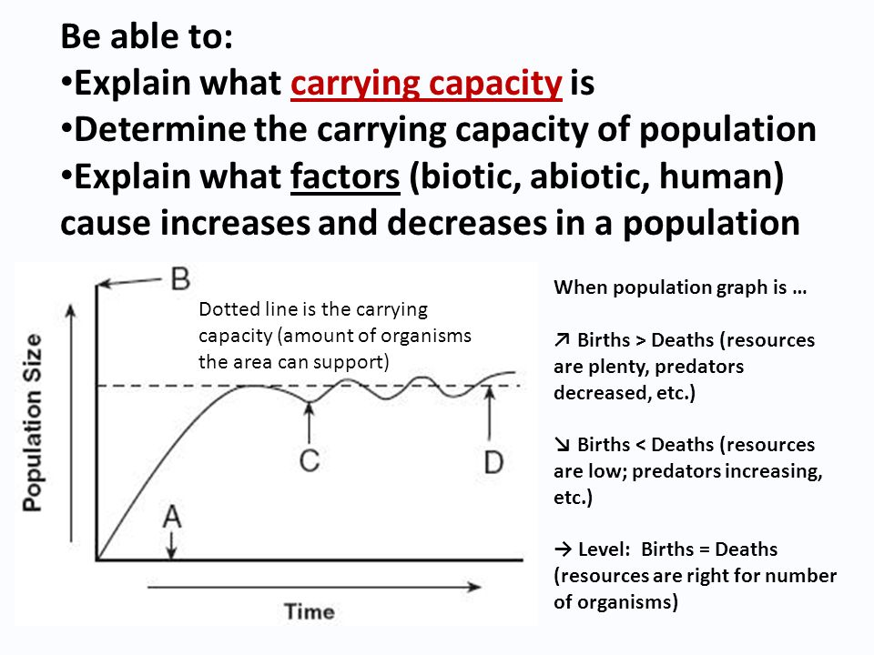 Explain what carrying capacity is